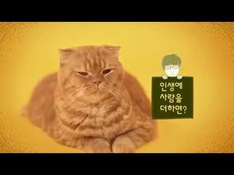 Imaginary Cat | Trailer 2 (Cat Version)|  상상고양이 티저 광고 고양이 ver