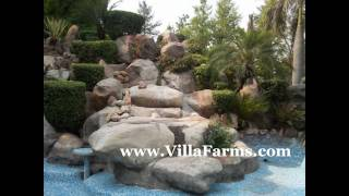 Farmhouse for rent sale in Chattarpur farms  by VillaFarms.com Westend Green Rajokari