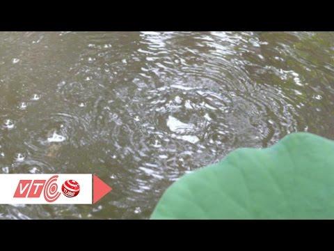 Kỳ bí hồ nước quanh năm sôi ùng ục | VTC