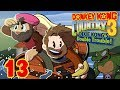 Donkey Kong Country 3 | Let's Play Ep. 13 | Super Beard Bros.
