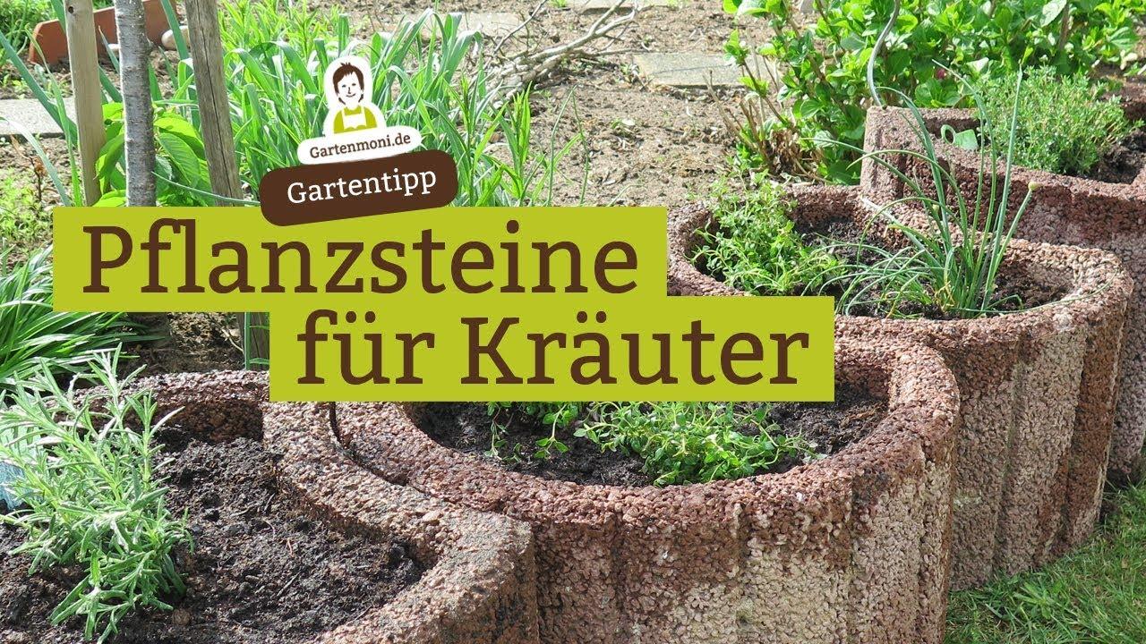 pflanzsteine mit kräutern bepflanzen - youtube