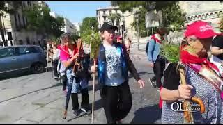 Pellegrini a Bari per San Nicola