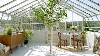 A Greenhouse Makeover with 'The Frame' by Samsung