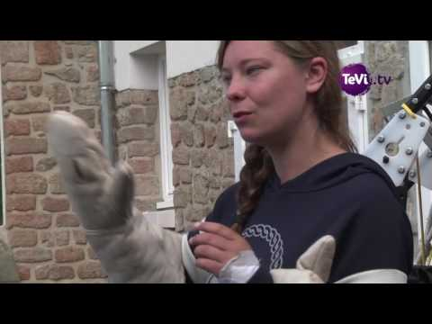 Aventure polaire Notre-Dame Carentan