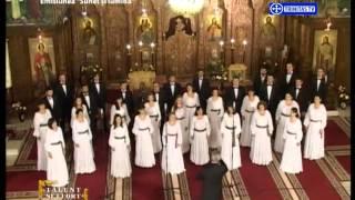 Talent și efort. Voicu Enăchescu (04 05 2016)