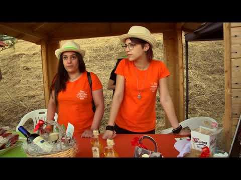 Camelot La Maestra Televisione in onda Domenica 14 alle 21:50