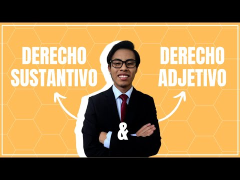 """Conferencia virtual """"Derecho Parlamentario y Derecho Electoral""""из YouTube · Длительность: 1 час43 мин30 с"""