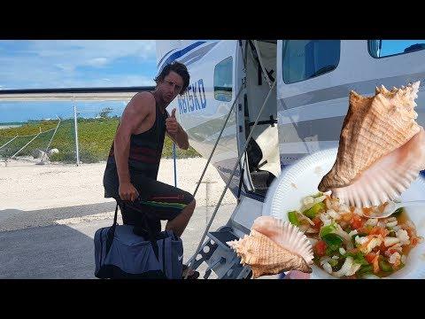 Conch Salad Catch N Cook - 동영상