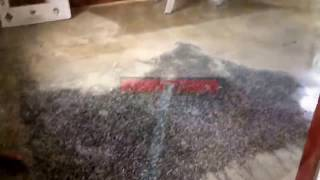 How to Remove Carpet Glue From Terrazzo Floors