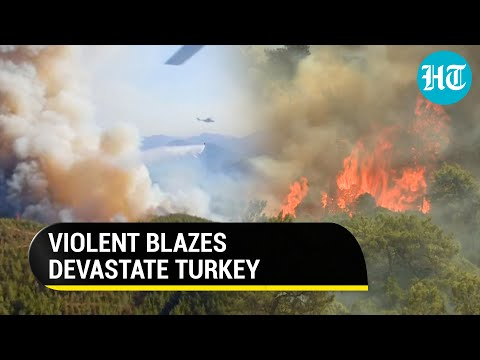 Watch: Massive forest fire in Turkey; choppers fill buckets at sea to douse flames; over 7 dead