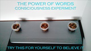 POWER OF WORDS | Try This Experiment Yourself and Know The Truth!