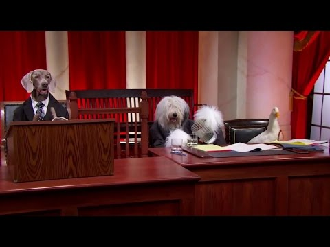 Gunn v. Minton: Oral Argument - January 16, 2013