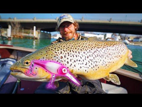 CRANKBAIT Fishing For GIANT TROUT!!