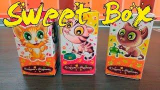 Sweet Box Пушистики Котята Коробочки Сюрпризы Обзор Игрушек