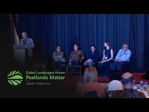 """""""Black gold"""" for climate mitigation? - GLF: Peatlands Matter"""