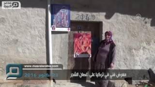 مصر العربية | معرض فني في تركيا على أغصان الشجر