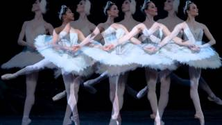 Tchaikovsky Swan Lake Ballet Suite Danse des petites cygnes