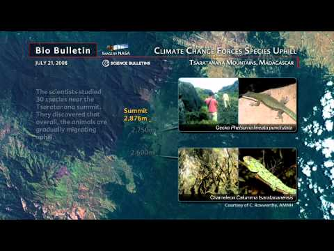 Science Bulletins: Climate Change Forces Species Uphill