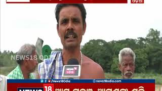 Relief for 20 Villages as bridge work comes to an end in Ganjam   News18 Odia
