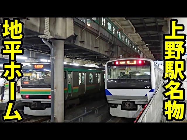 JR上野駅を探検 「地平ホーム」はどうなっている?