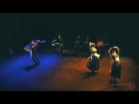MIRADAS, Flamenco por la Igualdad  Manuel Ramírez Ballet Flamenco