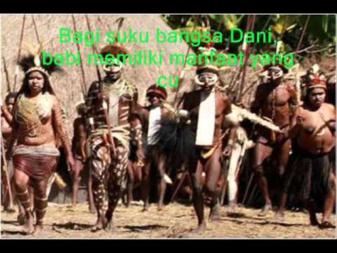 suku dani papua efryanti sitanggang youtube rh youtube com