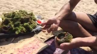 Самый ПРАВИЛЬНЫЙ способ приготовления Рапаны (морская улитка)