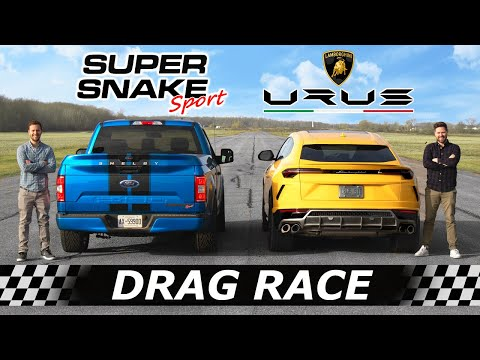 Lamborghini Urus vs 770HP Shelby F-150 Super Snake Sport // DRAG & ROLL RACE