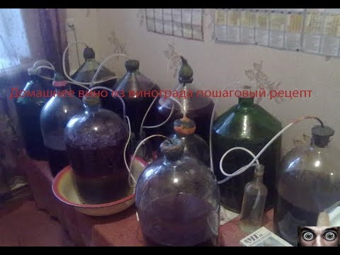 Домашнее вино из винограда пошаговый рецепт