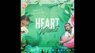 Magic City Hippies / Heart Wants