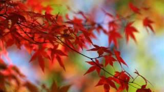 Sergei Rachmaninoff. Piano Concerto No 2 in C minor. Cecile Ousset - piano