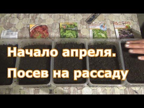 Блюда по ингредиентам, рецепты с фото