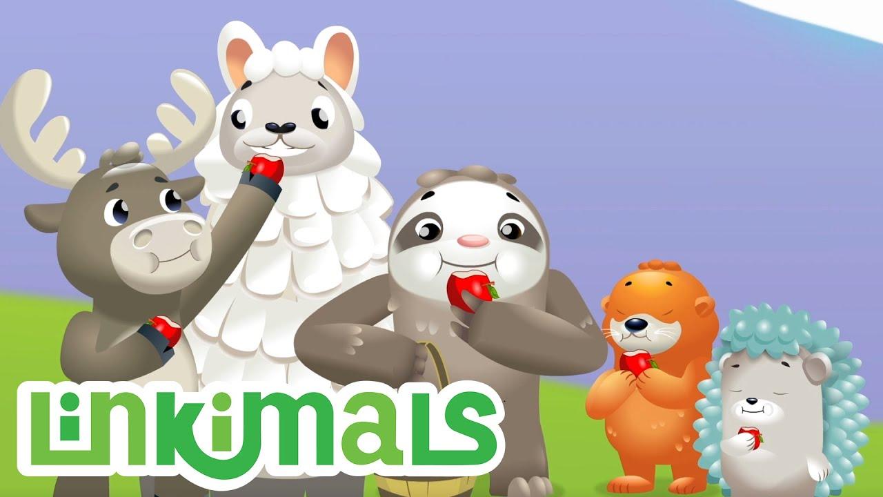 Linkimals™ | As Maçãs Perdidas | Compilação | Desenhos Animados | Educação | para Crianças