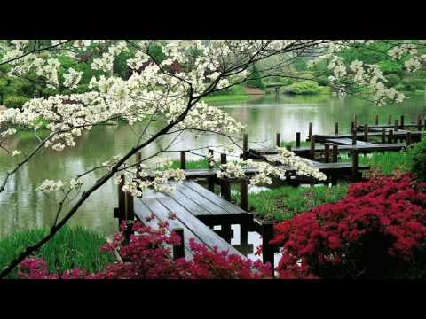 Relaxing Music - Zen Garden- Sleep, Music for Spa, Meditation, Therapy