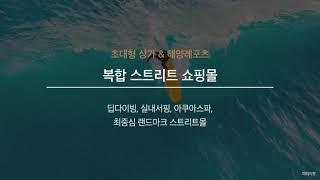 세계적 해양 레저 스포츠 투구 시화 MTV 거북섬 보니…