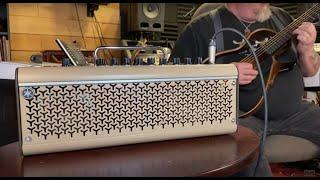 GSWJ - Yamaha Silent Guitar and THR30IIA desktop amp