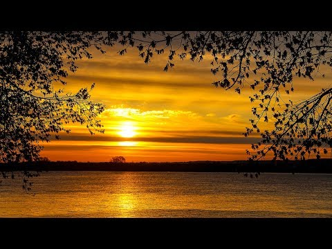 8 Hour Sleep Music, Calm Music for Sleeping, Delta Waves, Insomnia, Relaxing Music, ☯3264