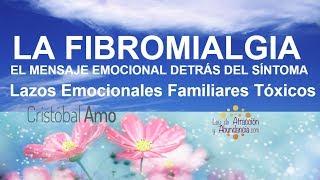 Biodescodificación De La Fibromialgia, Lazos Emocionales Familiares Tóxicos