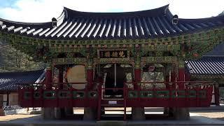9  김상돈 노래 역에선 가로등