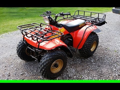 Barn Fresh 1985 Suzuki Quad Runner 250 - Revival