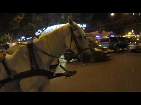 Odessa at night, street, people, horses, coachman and fantastic lady violinist