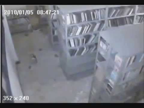 Earthquake in Haiti caught on cam (2010)