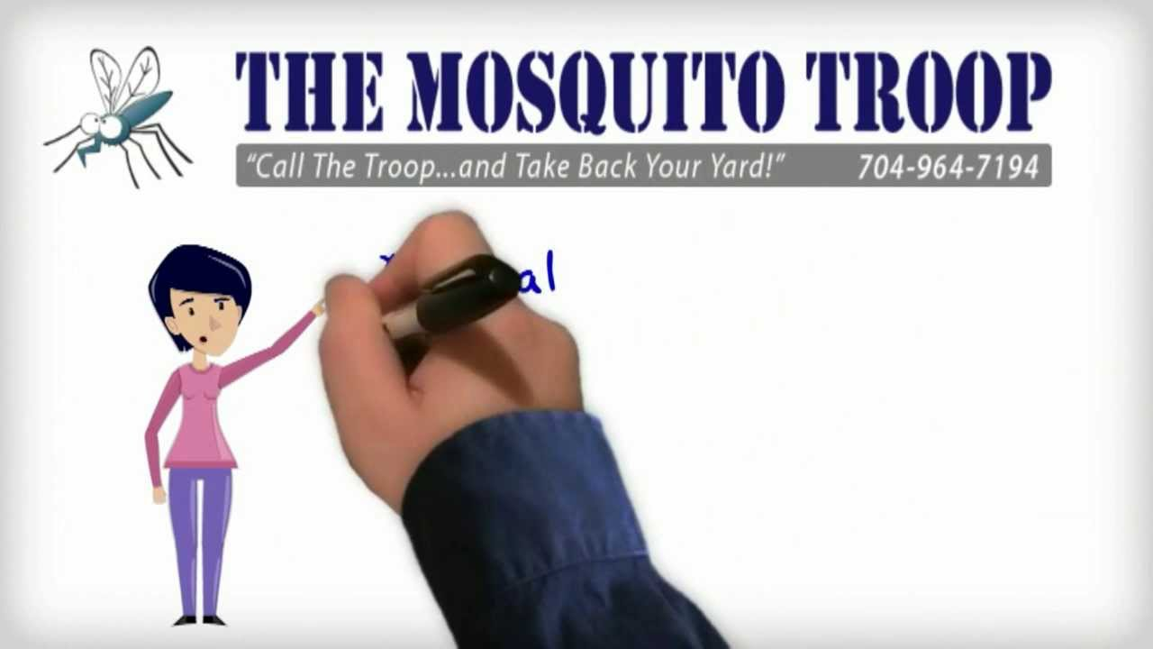mosquito troop in raleigh and charlotte nc get rid of mosquitos