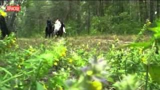 Видеосъемка свадьбы в Старом Осколе