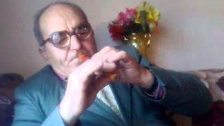 Avdija svira savino kolo na fruli uzivo