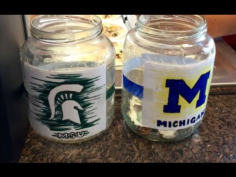 Conclusive proof of the better college... Michigan State University vs University of Michigan