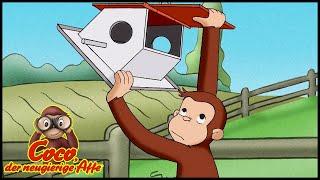 Coco der Neugierige Affe 🐵 Hopsi und das Vogelfutter 🐵 Ganze Folgen 🐵 Cartoons für Kinder🐵 Staffel 3