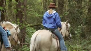 Grant's Getaways: L.L. Stub Stewart State Park