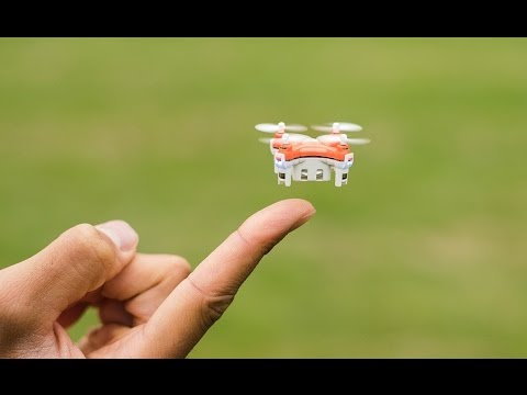 Worlds Smallest Drone