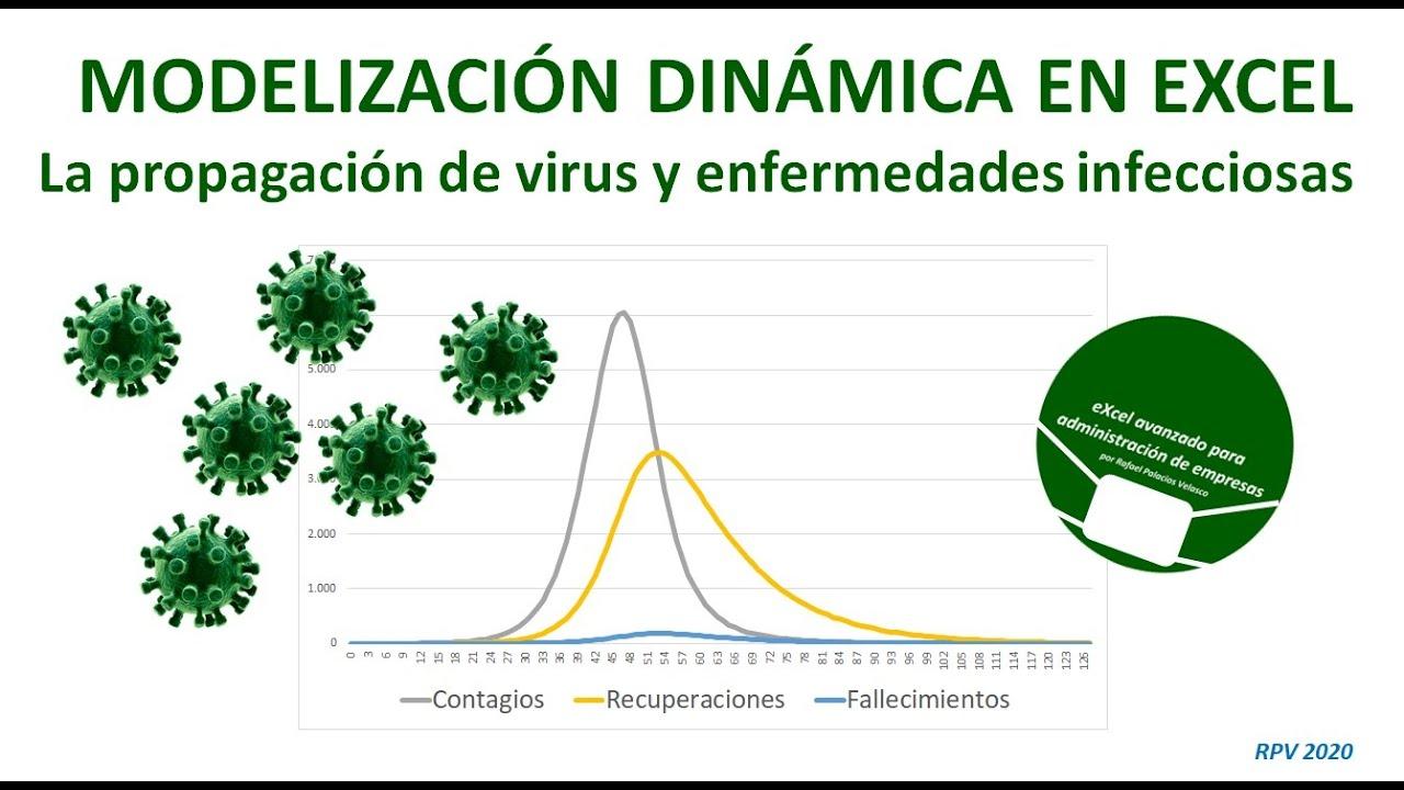 virus y enfermedades